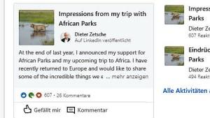Zetsche postet Löwenfotos auf Linkedin