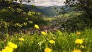 Nicht weit von Ettenheimweiler entfernt: die Ortschaft Untermünstertal.