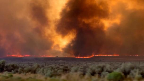 Waldbrände fegen über Kalifornien