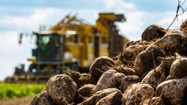Was gutes Essen mit gesundem Boden zu tun hat