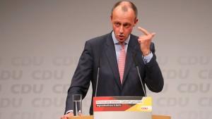 Hans-Werner Sinn lobt Friedrich Merz