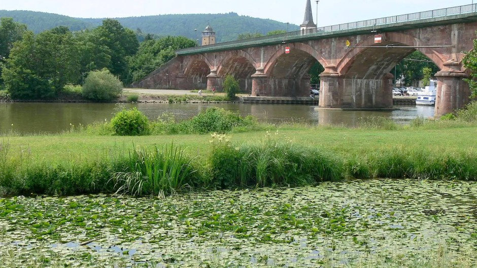Brücke über den Main: Es geht zur Wallfahrtsstätte Mariabuchen bei Lohr.