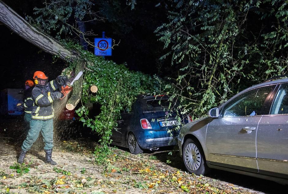 Feuerwehrleute in Hamburg zersägen einen Baum, der in der Nacht auf Autos gestürzt war.