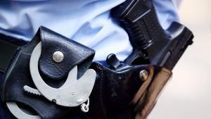 Berliner Polizei kauft alte Waffen aus Schleswig-Holstein