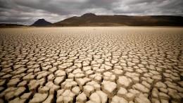 Weltbank sammelt 82 Milliarden Dollar für ärmste Länder