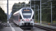 Angriff in einem Zug der Schweizer Südostbahn