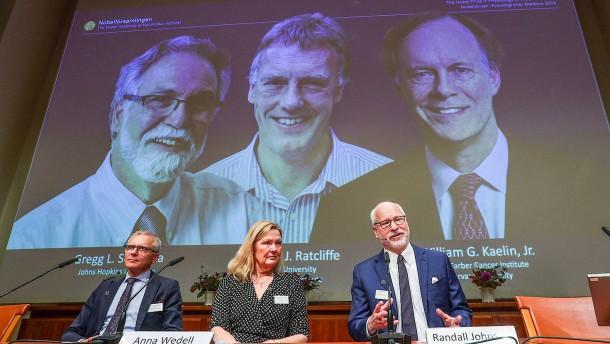 Nobelpreis geht an Zellforscher in Amerika und Großbritannien