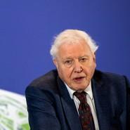 Im Einsatz gegen den Klimawandel: David Attenborough bei einem Klimagipfel im Februar 2020 in London