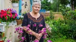 Die Großmutter aller Wahlen