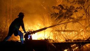 Waldbrände vertreiben Touristen und Einwohner