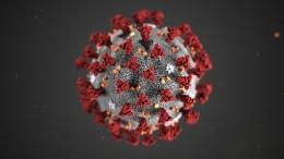 So wird das Coronavirus übertragen