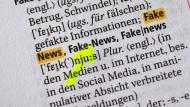 Keine Angst vor Fake News?