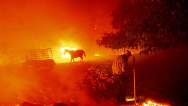 Eine schrecklich heiße Woche in Kalifornien