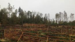 Holzgatter als Überlebenshilfe