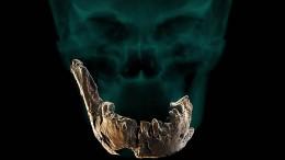Knochen eines bisher unbekannten Urmenschen in Israel gefunden