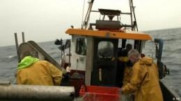 Großbritanniens Fischer und der Brexit
