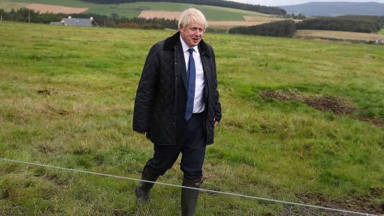 Johnson denkt nicht über einen Rücktritt nach