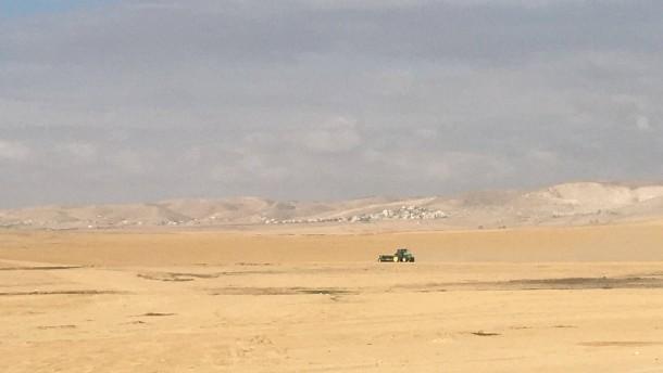 In der Wüste wächst was