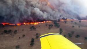Buschbrände verwüsten Südosten Australiens