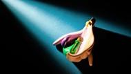 Die Vulva einer Frau sieht natürlich nicht so bunt und immer etwas anders aus. Aber mit diesem Modell will der  Schweizer Biologe Daniel Haag-Wackernagel wichtiges Basiswissen der weiblichen Anatomie vermitteln.