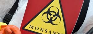 Der Bundesstaat Washington hat Klage gegen Monsanto wegen dessen PCB-Produktion eingereicht.
