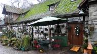 Bewegte Geschichte: Der heutige Siedlungslehrhof war früher deutsches Gefangenenlager, amerikanisches Camp und Nazi-Mustersiedlung.