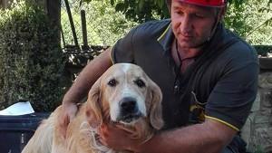 Romeo nach anderthalb Wochen aus Trümmern geborgen