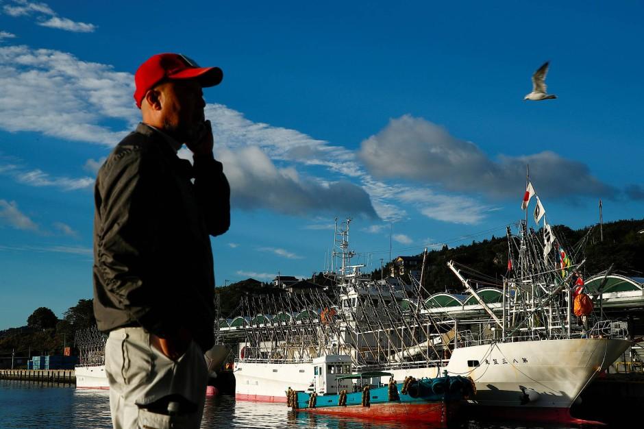Der frisch gefangene Fisch wird direkt im Anschluss auf dem Ofunato-Fischmarkt verkauft.  Ein Fischkäufer wartet auf den Beginn.