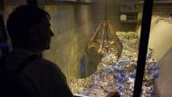 Entsorgung: Im Müllheizkraftwerk in Offenbach wird Müll in die Aufgabetrichter der Verbrennungslinien gekippt.