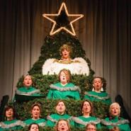 Singender Weihnachtsbaum - In der Frankfurter Frauenfriedenskirche singt ein deutsch-amerikanischer Chor auf einem Gerüst, das aussieht wie ein Weihnachtsbaum.