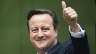 Wahlsieger Cameron kann alleine regieren