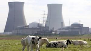 Belgien fährt umstrittenen Reaktor wieder hoch