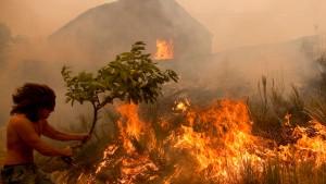 Hunderte kämpfen gegen Waldbrände in Portugal