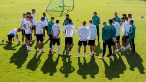 Löw-Elf bleibt in Nations League erstklassig