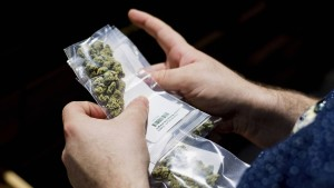 Cannabispatienten müssen Waffenschein abgeben