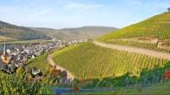Wer eine Weinlage wie den Zeltinger Schlossberg bewirtschaften darf, weiß ganz genau, was ein Standortvorteil ist.