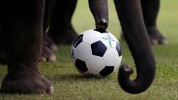 Fußball spielen als Trauerarbeit