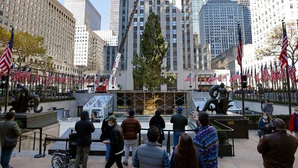 Der Weihnachtsbaum am Rockefeller Center steht