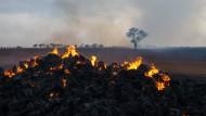 Tote bei Buschbränden in Südaustralien