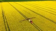 In einigen Regionen Deutschlands blüht bereits der Raps. Die Felder, auf denen er steht, gehören jedoch oft nicht dem Landwirt, der sie bestellt.