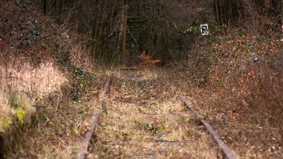 Von Mainz über Wiesbaden und Taunusstein bis Bad Schwalbach soll die neue Citybahn fahren. Aber wann entscheidet sich, ob sie gebaut wird?