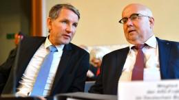 AfD stellt Verfassungsfeindlichkeit in eigenen Reihen fest