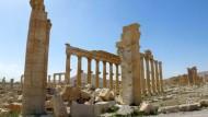 IS-Terrormiliz erobert Oasenstadt Palmyra zurück