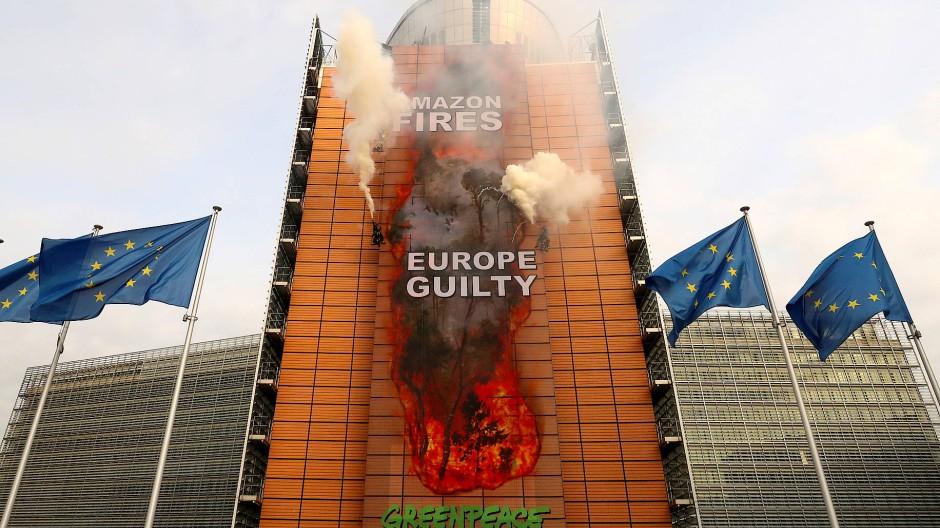 Greenpeace gibt EU die Mitschuld