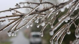 Das Wetter kühlt nachts bis zu frostigen Temperaturen ab
