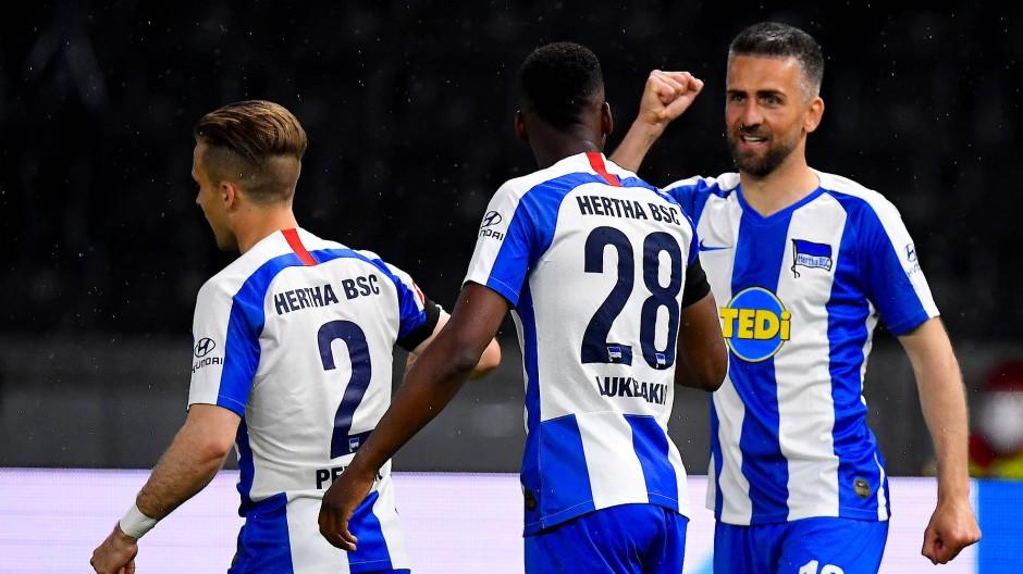 Vedad Ibisevic (rechts) freut sich mit seinen Teamkollegen über seinen Treffer.