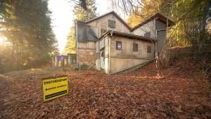Wissenschaftler im Taunuswald