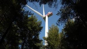 """""""Wir brauchen eine Bürger-Energiewende"""""""