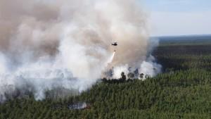 In Brandenburg brennen 100 Hektar Wald