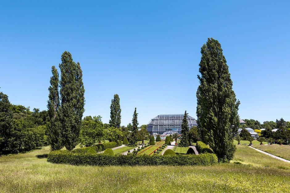 Ein Besuch im Botanischen Garten Berlin mit 22.000 Pflanzenarten auf insgesamt 43 Hektar lohnt sich.